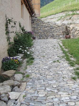 030_ch-dAcces_dans_terrasses_Mont-Dessous_Rossiniere_IMG_5385